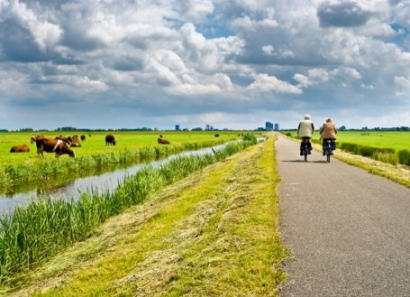 FIetsarrangement Friesland