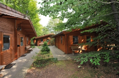 Luxe chalets