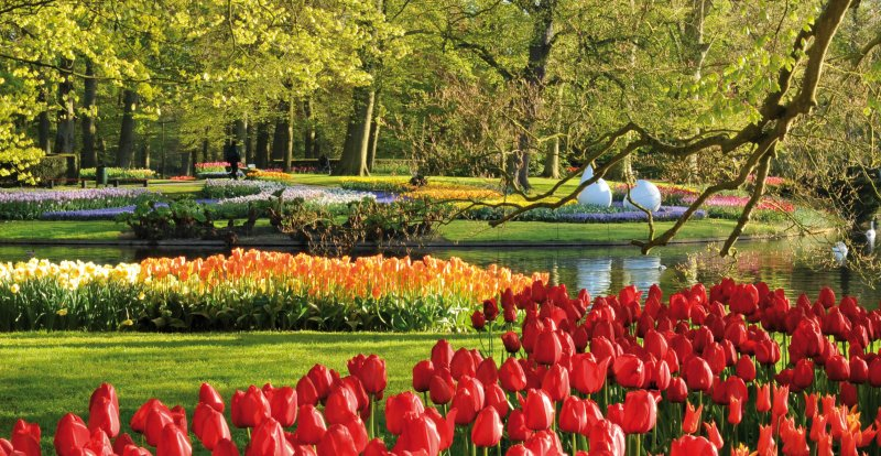 Keukenhof Fashion & Flowers