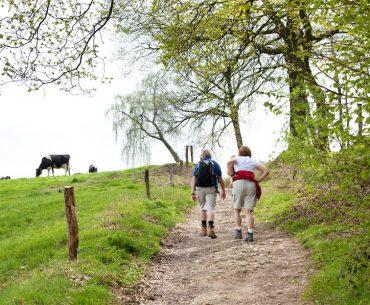 Wandelvakantie Gelderland