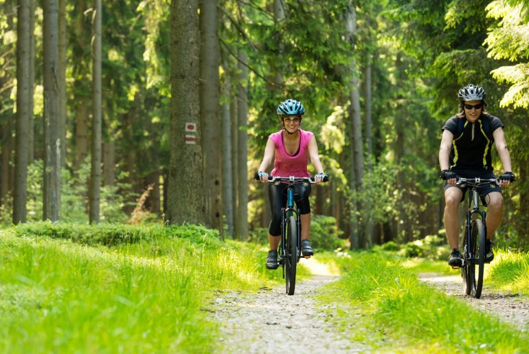 fietsvakantie tip veluwe