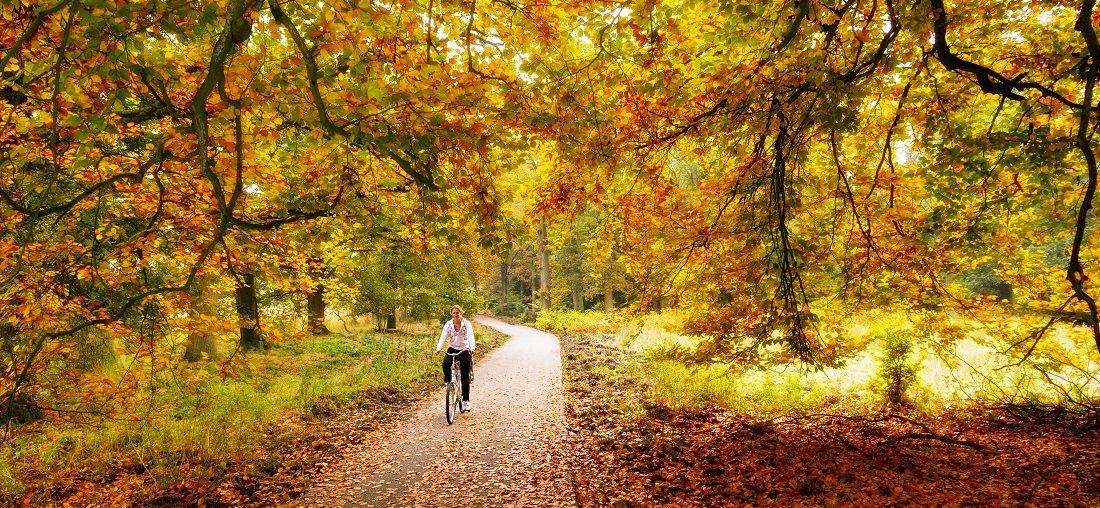 Hotel Veluwe fietsen - 5 Tops tips