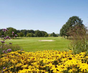 Golfen Achterhoek