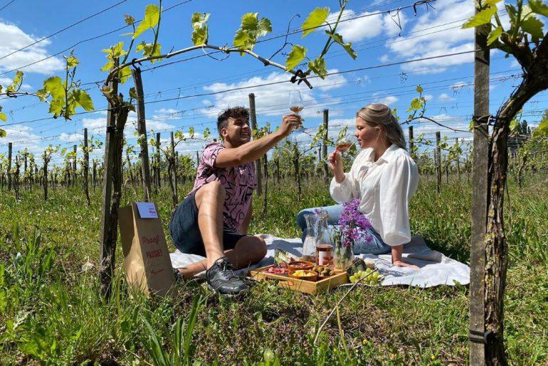 romantische picknick op een wijngaard in Montferland