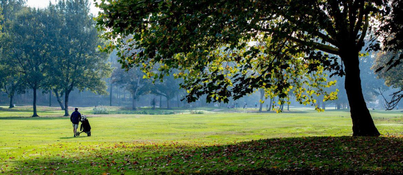 romantisch golfarrangement in vlaardingen