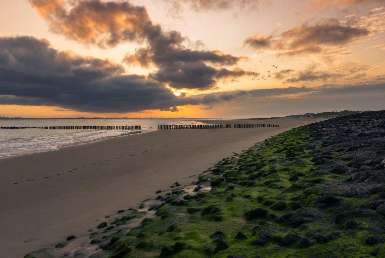 5 uitwaai tips aan de hollandse kust